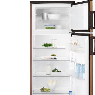 Electrolux RJ2300AOD2 frigorifero con congelatore