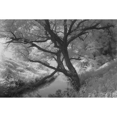 Kenko PRO1D R72 Infrared camera filter 67mm