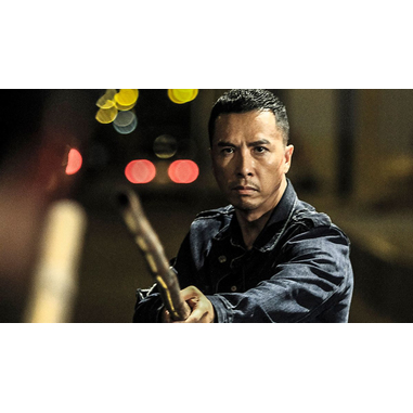 Kung Fu Jungle (DVD)