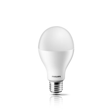 Philips LED 100W E27